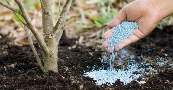 مدیریت تلفیقی حاصلخیزی خاک