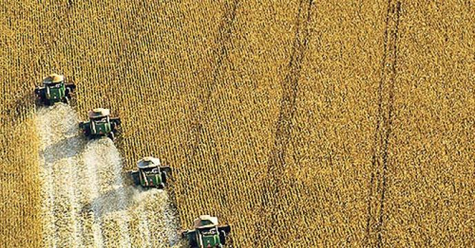 ریشه جاماندگی از کشاورزی فناورانه