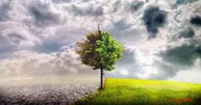کودهای کشاورزی و تغییرات آب و هوایی