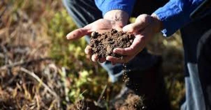 راهنمای مدیریت تلفیقی حاصلخیزی خاک و تغذیه گیاه