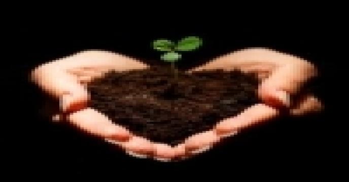 خاک را کیمیا کنیم (2)