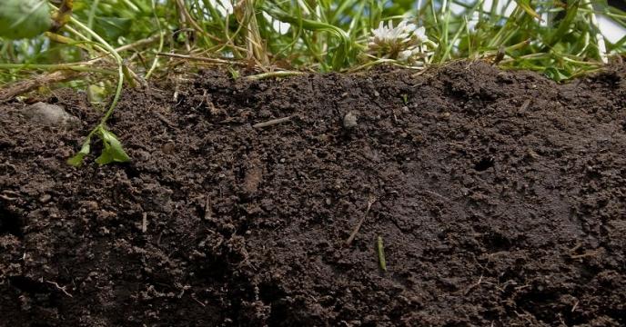 آنالیز خاک، اهمیت آن و روش های نمونه برداری از خاک
