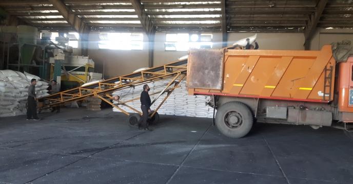 توزیع 15 تن کود سولفات پتاسیم در شهرستان کرج