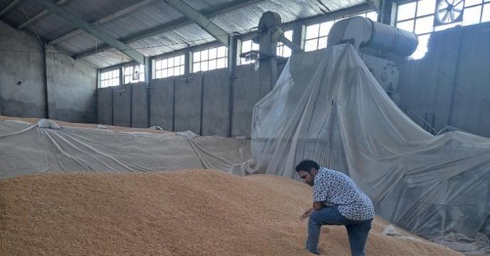 بازدید رئیس مجمع نمایندگان استان در مجلس شورای اسلامی از دستگاه بوجاری