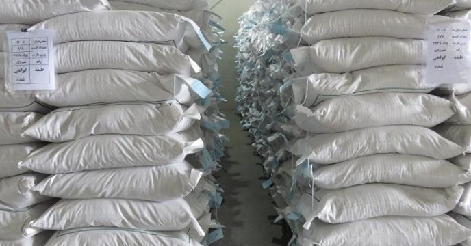 توزیع 475 کیلوگرم بذر برنج طارم هاشمی  بصورت مستقیم  در قائم شهر