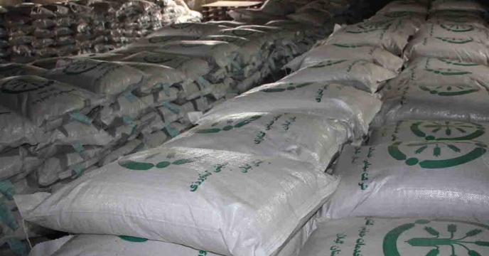 تخصیص 110 تن بذر اصلاح و گواهی شده برنج رقم هاشمی برای شهرستان لاهیجان