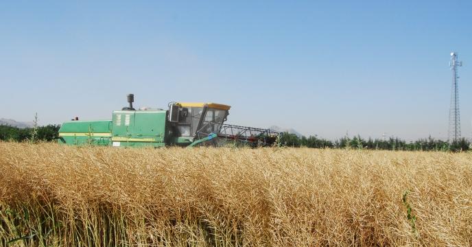 همایش شکرگزاری از تولید بی سابقه گندم در استان اردبیل