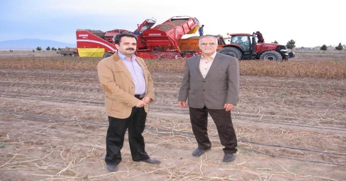 برداشت مکانیزه سیب زمینی در مزارع شهرستان تربت حیدریه (جلگه رخ)