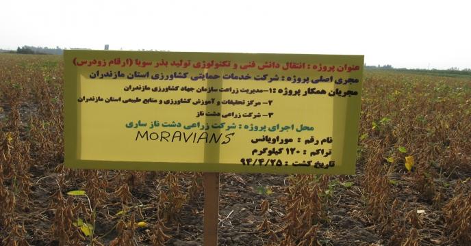 اجرای پروژه انتقال دانش فنی تولید بذر سویا در مازندران