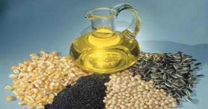 خرید 130 هزار تن دانه روغنی در سال جاری