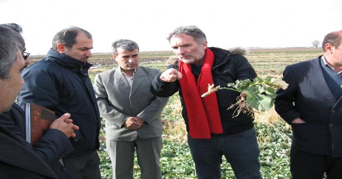 کارگاه آموزشی انتقال دانش فنی تولید کلزای هیبرید در استان اردبيل برگزار شد
