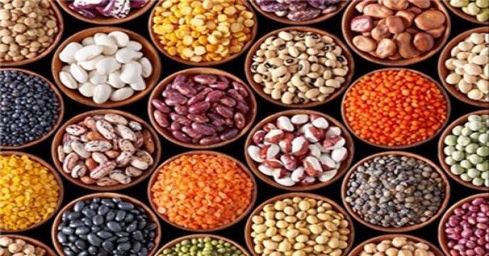 عرضه فراوان غلات علیرغم کاهش انتظاری در تولید جهانی/تولید جهانی با ۴.۵ میلیون تن کاهش به ۱۳۰۰ میلیون تن میرسد