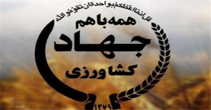 5 سامانه خدمات الکترونیکی و کاربردی وزارت جهاد کشاورزی رونمایی شد