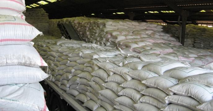 افزایش 40 درصدی توزیع انواع کودهای کشاورزی در استان مازندران