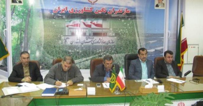 حضور سرپرست شرکت خدمات حمایتی کشاورزی مازندران در جلسه ستاد تغذیه گیاهی استان