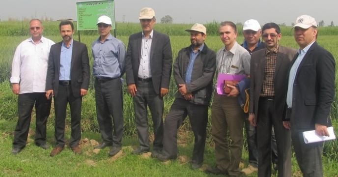 مزارع الگوئی، ترویج بکار گیری تکنولوژی کشاورزی و مدیریت صحیح مزارع