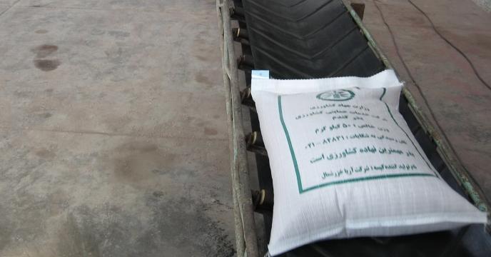 فرآوری یک میلیون و 66 هزار کیلوگرم بذر گندم در استان مازندران