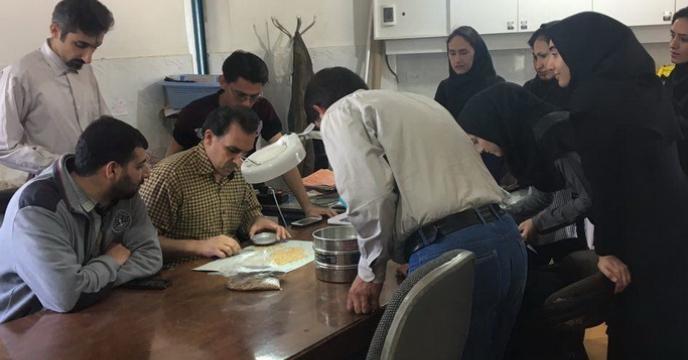 بازدید دانشجویان دانشگاه کشاورزی و منابع طبیعی  گرگان از کارخانه بوجاری بذر شرکت خدمات حمایتی کشاورزی استان گلستان