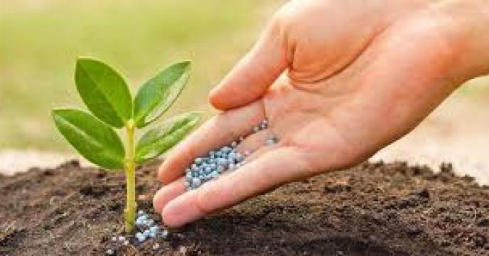 مدیر شرکت خدمات حمایتی کشاورزی استان قزوین :