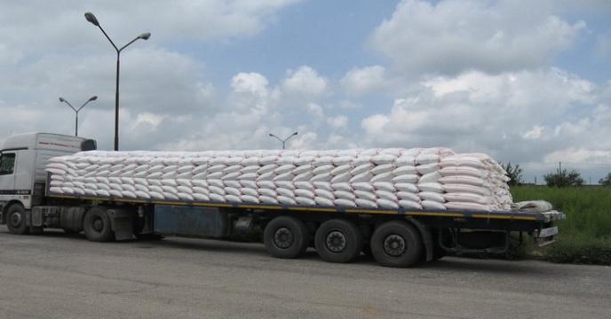 توزیع بیش از 2300هزار تن بذر گندم اصلاح شده در مازندران