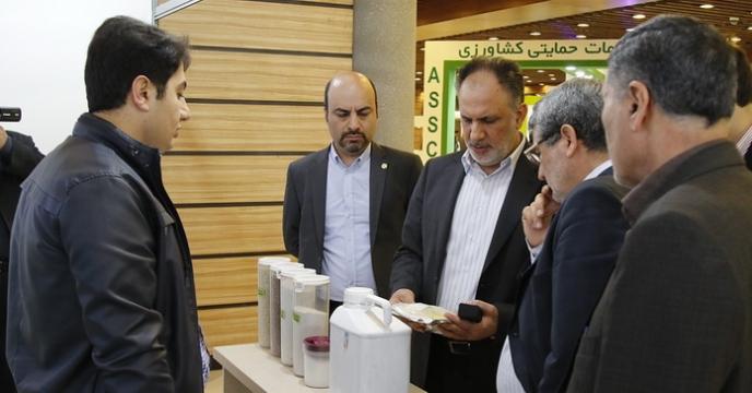 مدیرعامل شرکت خدمات حمایتی کشاورزی ایران از خودکفایی در تولید کود فسفاته تا ۴ سال آینده و پتاسه تا ۲ سال آینده خبر داد.