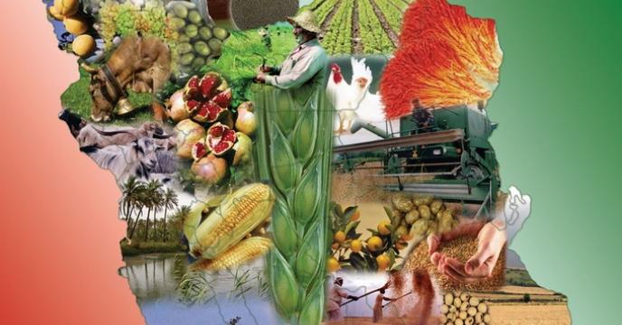 عملکرد 100 روزه وزارت جهاد کشاورزی در دولت دوازدهم