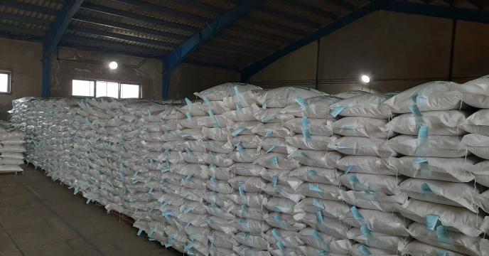 نمونه برداری از بذرهای برنج پروسس شده توسط نماینده موسسه تحقیقات اصلاح بذر و نهال