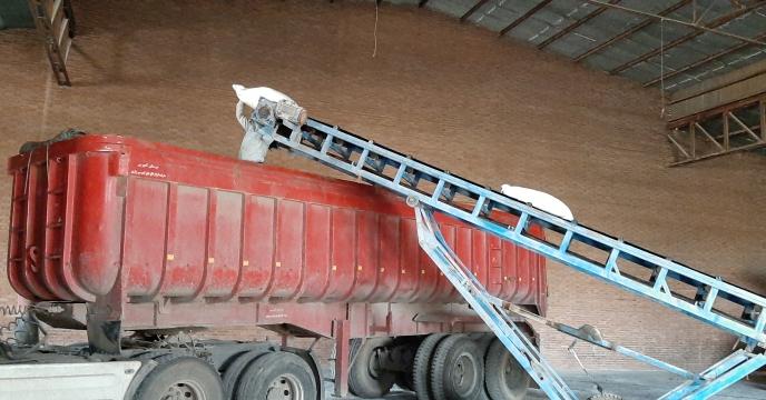 پیش بینی خرید تضمینی 220 تن گندم در استان قزوین
