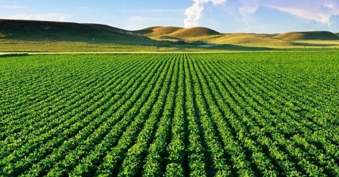 سامانه گرمسیری ایلام ۸۵ درصد پیشرفت دارد.