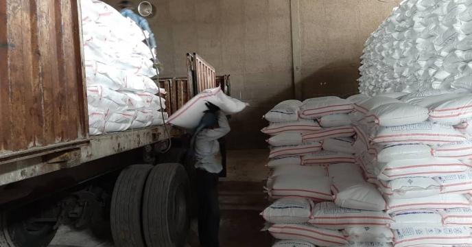توزیع  500 تن کود شیمیایی اوره در استان قزوین