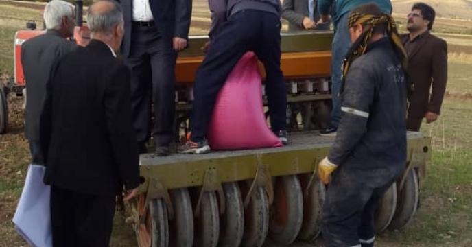 آغاز عملیات کاشت مزرعه گندم طرح الگویی پایلوت تغذیه گیاهی استان  لرستان