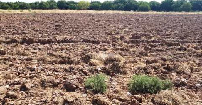 انجام نمونه برداری از خاک مزرعه شبستر واقع در استان آذربایجان شرقی