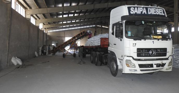 توزیع 42 تن کود فسفاته 13 درصد در استان البرز