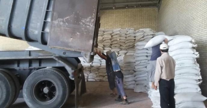 تخلیه کود سوپر فسفات تریپل در انبار سازمانی کود بنداروز شهرستان دشتستان