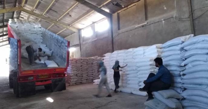 تأمین و توزیع ۱۰۰ تن انواع کود شیمیایی در شهرستان عسلویه