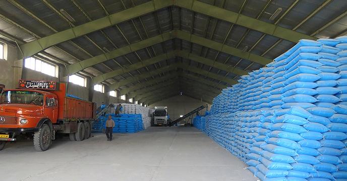 مبلغ حدود 22 میلیارد ریال هزینه حمل کود شیمیایی شرکت خدمات حمایتی کشاورزی استان همدان در 60 روز ابتدایی سال 1399