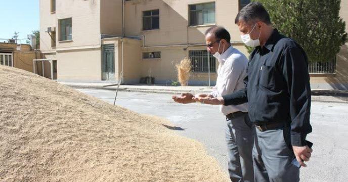 بازدید رئیس مرکز تحقیقات و آموزش کشاورزی و منابع طبیعی از سایت بوجاری استان
