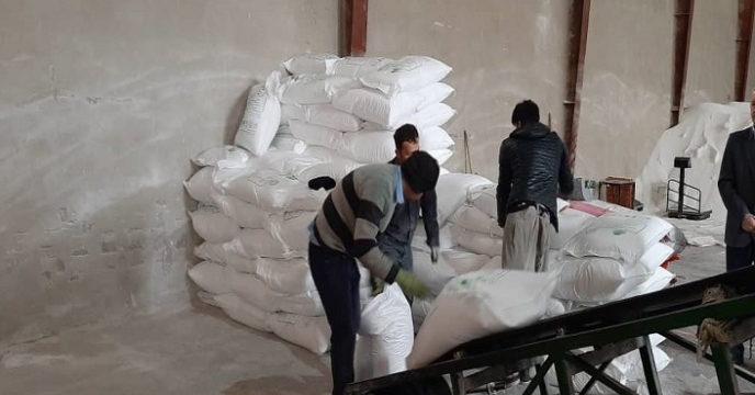 تخلیه و کیسه گیری کود اوره فله در استان آذربایجان غربی