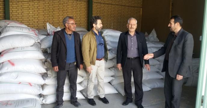 عملیات انبار گردانی شرکت خدمات حمایتی کشاورزی استان چهارمحال وبختیاری