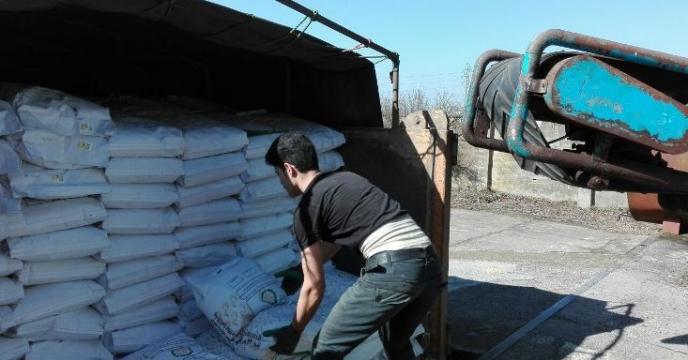 توزیع 500 تن بذر برنج