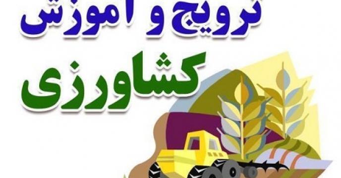آموزش کشاورزی در 85 روستای تنکابن استان مازندران
