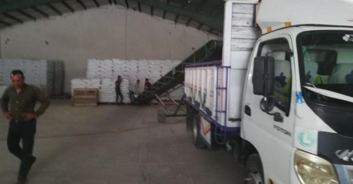 گزارش تصويري توزیع بذر گندم استان هرمزگان