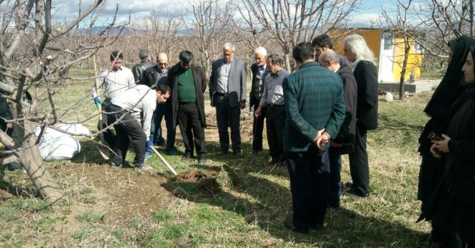 کلاس عملی چالکود درختان میوه در شهرستان اهر