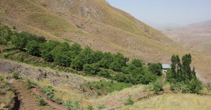 تأمین کود مورد نیاز باغات شهرستان کرج