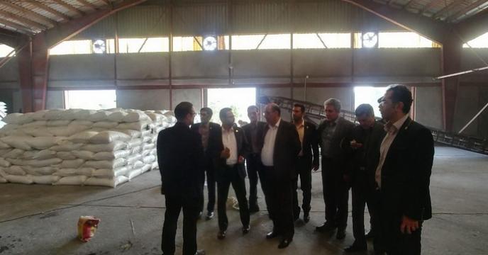 بازدید مهندس منصوری عضو محترم هیئت مدیره و معاون توسعه مدیریت و منابع و هیئت همراه از سایت کیسه گیری کود فله در گرگان