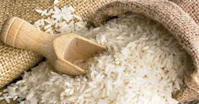 برگزاری اولین جشنواره روز ملی برنج در شرکت خدمات حمایتی کشاورزی استان گیلان