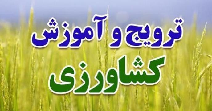 154 دوره آموزشی کشاورزی در بابل استان مازندران