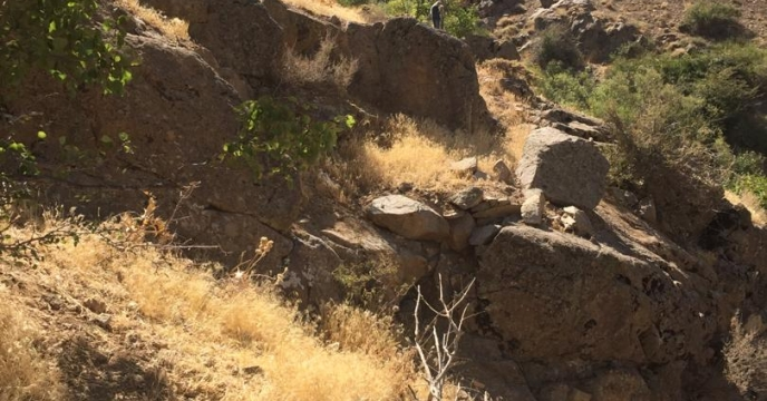 پیگیری وضعیت اراضی متعلق به شرکت از منابع طبیعی استان