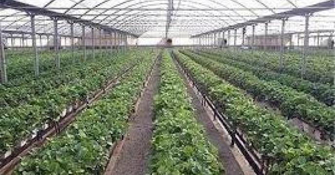 احداث شهرک های کشاورزی استان مازندران