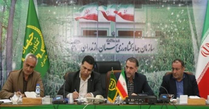 ایجاد 770 شغل جدید در بخش کشاورزی استان مازندران